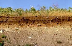свойства глиняных грунтов, особенности и соотношения минералов