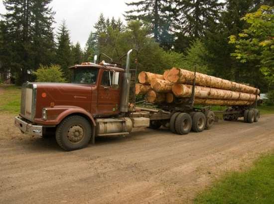 01323177864_truck-auto-info_pacific_2_sqiz3sz-jpg-750x0_q85_crop
