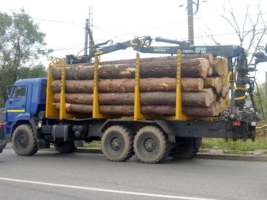 Лесовоз КАМАЗ, перевозка бревен, об