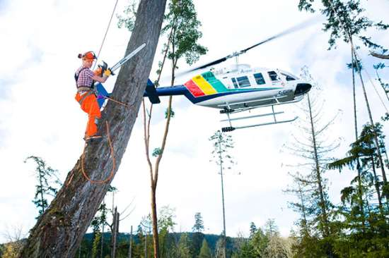 03heli-logging-2