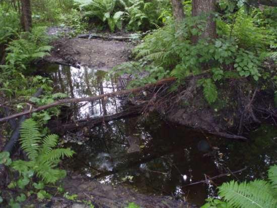 Река в естественном состоянии