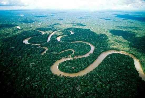 04dozhdevye-lesa-amazonii-basseyn-reki-amazonki-braziliya