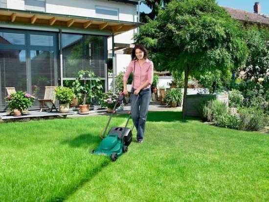 Полезные советы: какую садовую технику стоит купить?