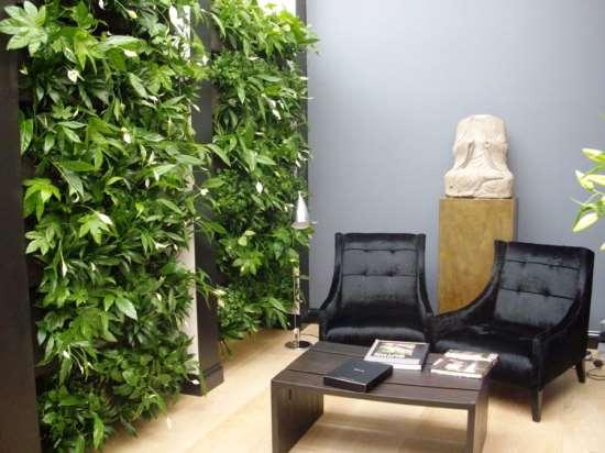 Преимущества создания вертикальных садов в современном доме