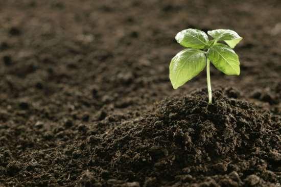 Почвогрунт на выгодных условиях