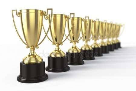 ИРИГО – различные виды наград для любого случая
