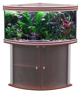«SunSun» – оригинальные аквариумы на любой вкус