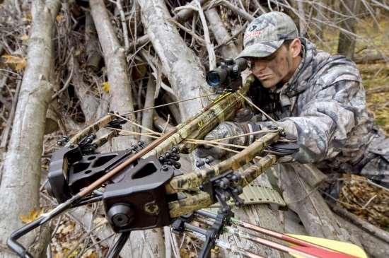 Требования к качеству арбалетов для охоты