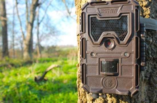 Фотоловушки для охраны оптом и в розницу в интернет-магазине