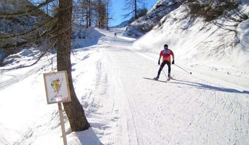 Особенности подготовки лыжных трасс