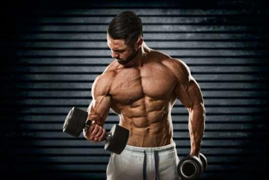 Принципы быстрой тренировки и накачки рук
