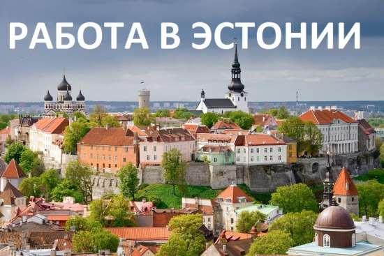 Работа в Эстонии — вакансии для любых спецов