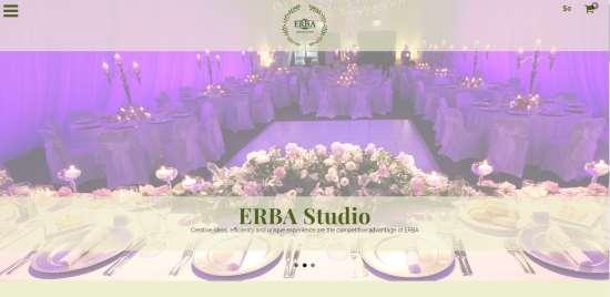 Планирование и разработка мероприятий компанией «ERBA»