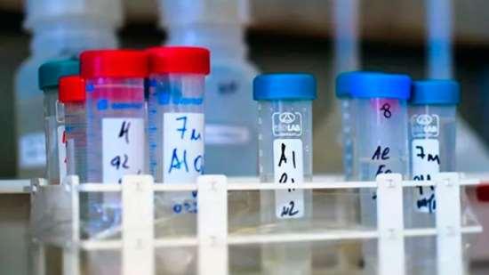 Учеными опровергнута опасность Е-добавок