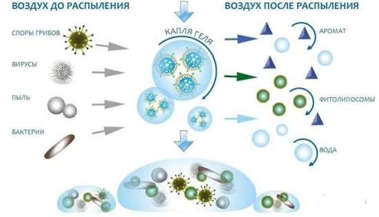 Озонирование помещений для избавления от неприятных запахов