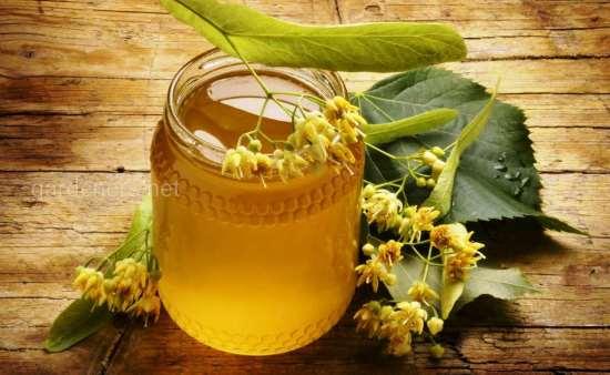 Липовый мед и его особенности