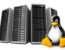 Выделенный сервер от компании «RegVPS»